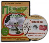Прививка плодовых деревьев: лучшие способы