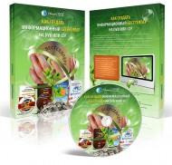 Как создать информационный бестселлер       на DVD или CD