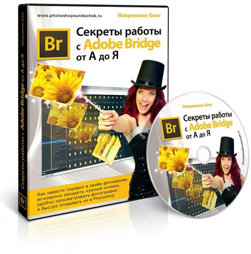 Дмитрий печеркин повелитель партнерских программ