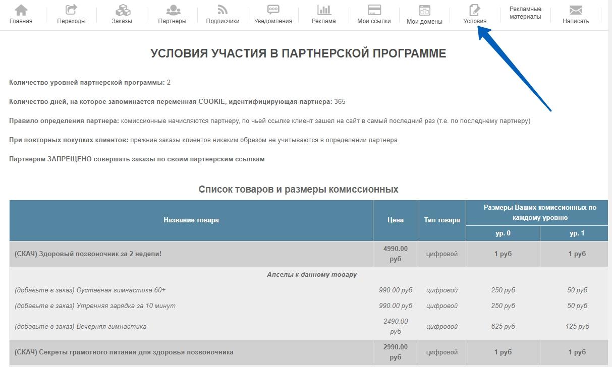 """Вид меню """"Условия"""" кабинетов партнера на сервисе e-autopay"""